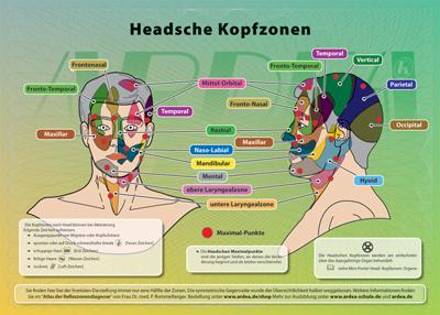 Mini-Poster: Headsche Kopf-Zonen